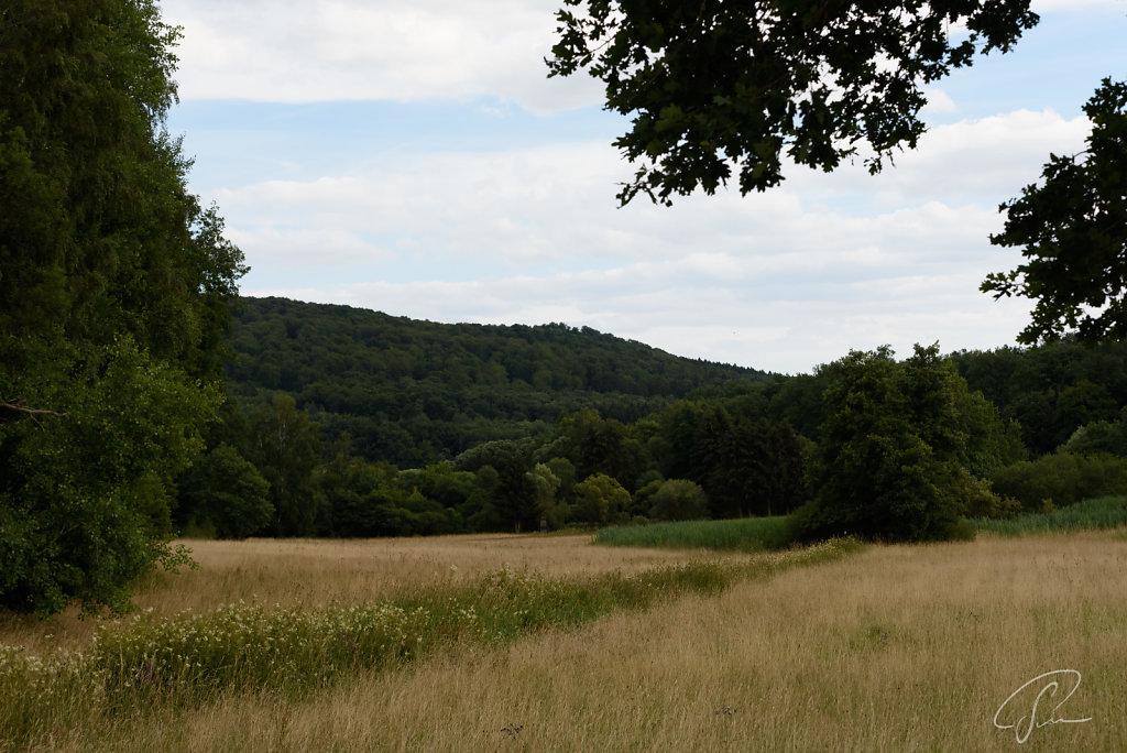 Heftricher Moor - Original